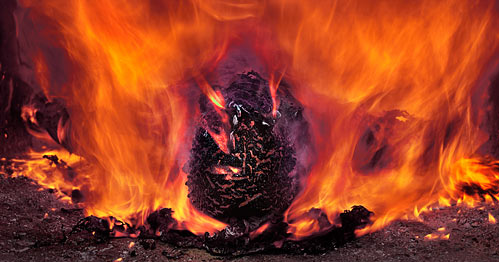 On the Destruction of the Body by Fire — Fr. John Peck